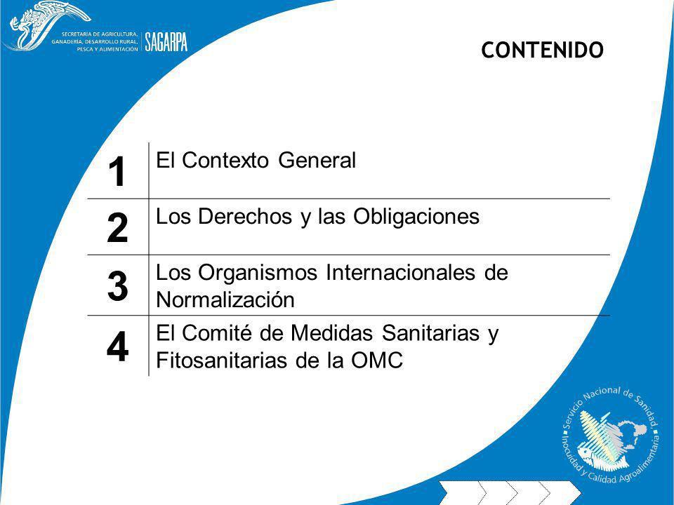 1 2 3 4 CONTENIDO El Contexto General Los Derechos y las Obligaciones