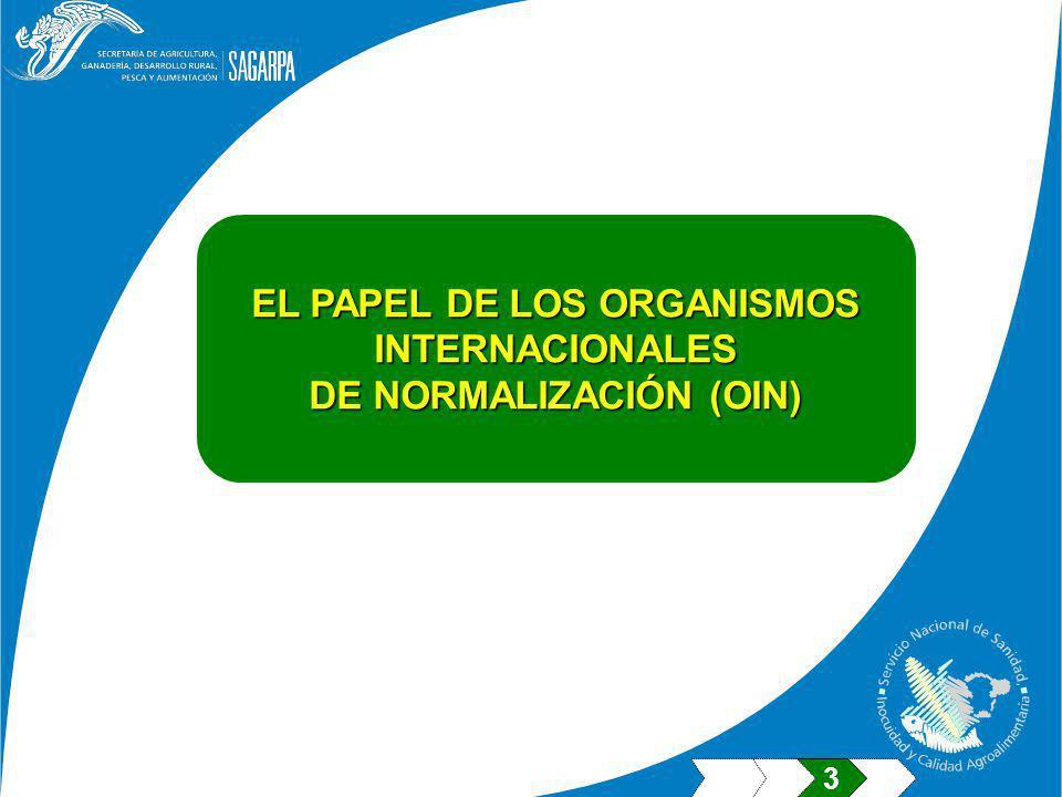 EL PAPEL DE LOS ORGANISMOS DE NORMALIZACIÓN (OIN)