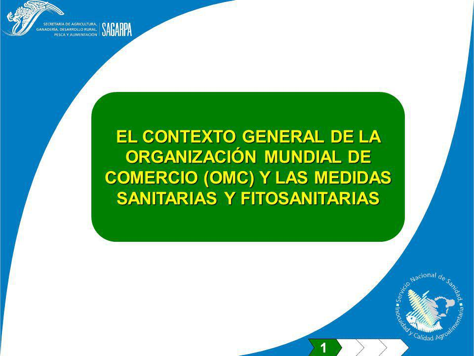 EL CONTEXTO GENERAL DE LA ORGANIZACIÓN MUNDIAL DE