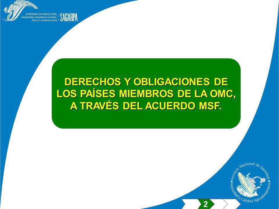 DERECHOS Y OBLIGACIONES DE LOS PAÍSES MIEMBROS DE LA OMC,