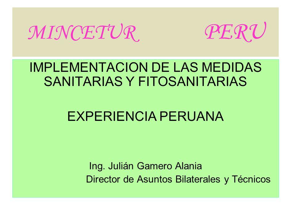 MINCETUR PERUIMPLEMENTACION DE LAS MEDIDAS SANITARIAS Y FITOSANITARIAS. EXPERIENCIA PERUANA.