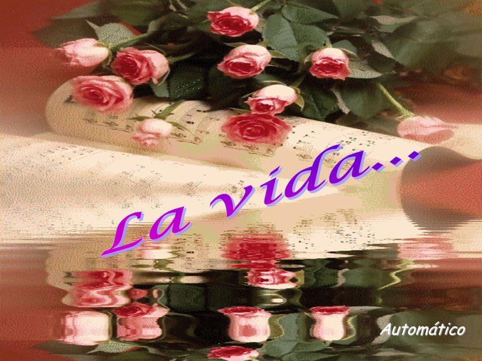 Automático La vida... www.vitanoblepowerpoints.net