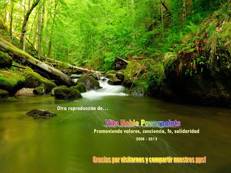 Que tengan un hermoso día www.vitanoblepowerpoints.net