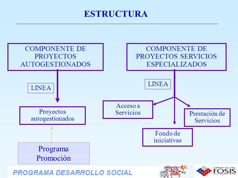 ESTRUCTURA Programa Promoción COMPONENTE DE PROYECTOS AUTOGESTIONADOS