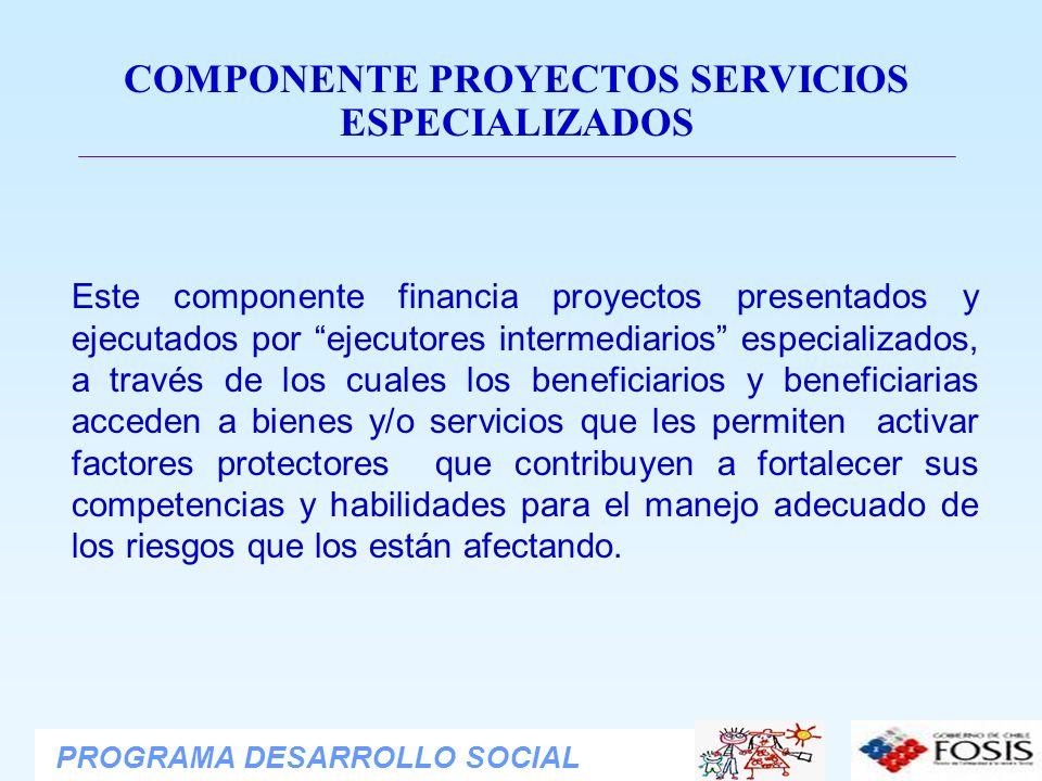 COMPONENTE PROYECTOS SERVICIOS ESPECIALIZADOS