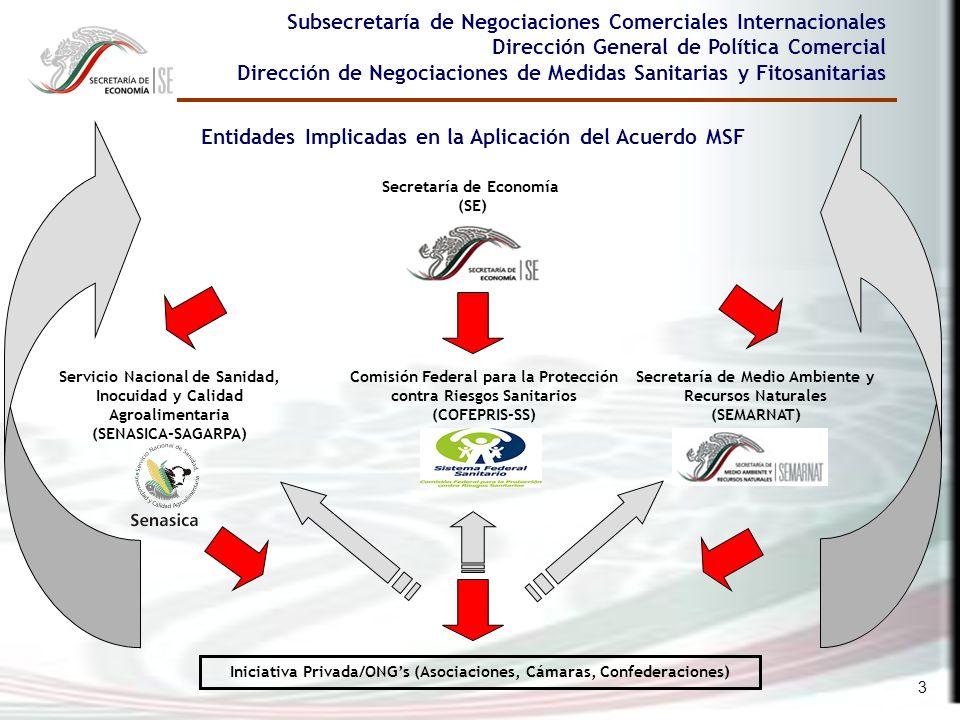 Entidades Implicadas en la Aplicación del Acuerdo MSF