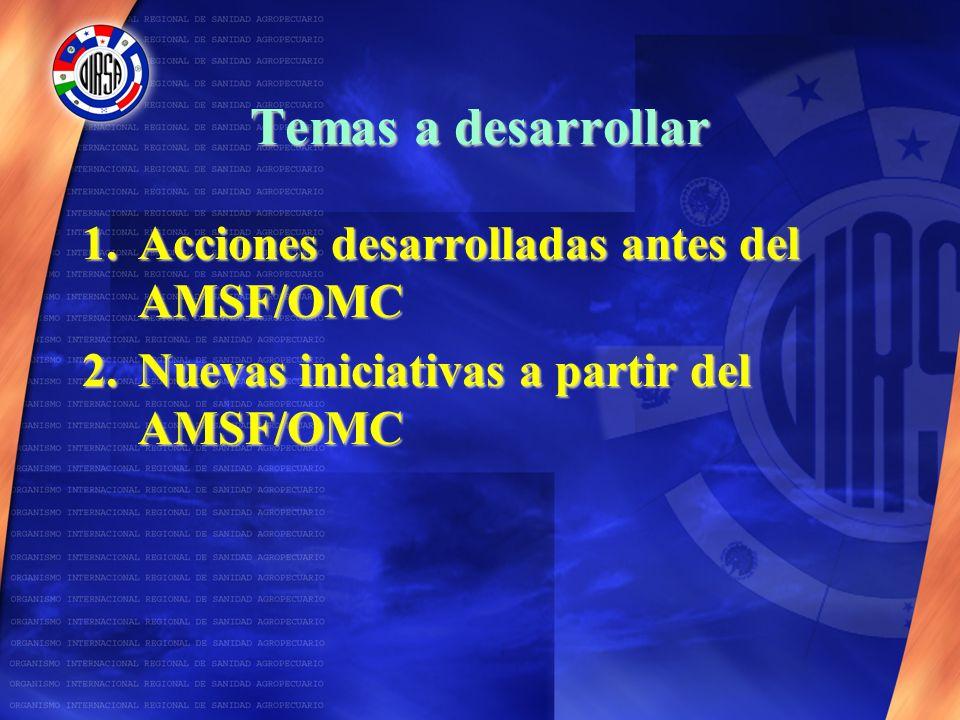 Temas a desarrollar Acciones desarrolladas antes del AMSF/OMC