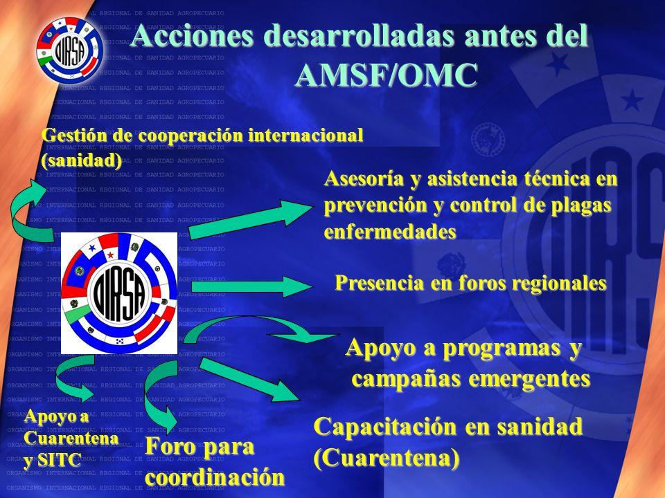 Acciones desarrolladas antes del AMSF/OMC