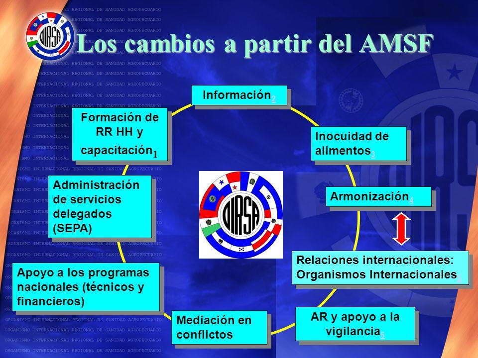 Los cambios a partir del AMSF