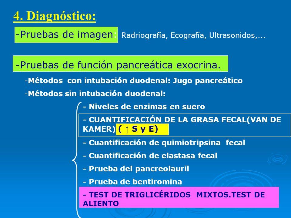 4. Diagnóstico: -Pruebas de imagen: Radriografía, Ecografía, Ultrasonidos,... -Pruebas de función pancreática exocrina.