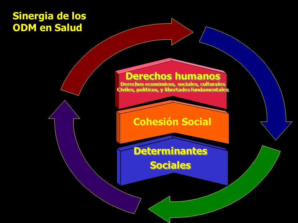 Derechos humanos Determinantes Sociales