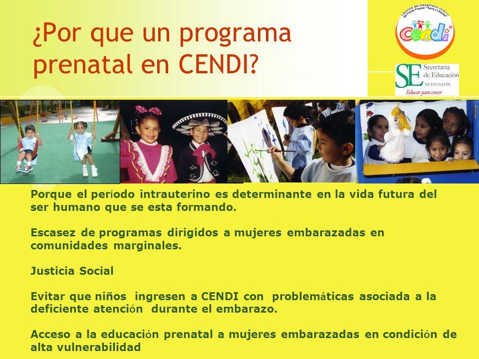 ¿Por que un programa prenatal en CENDI