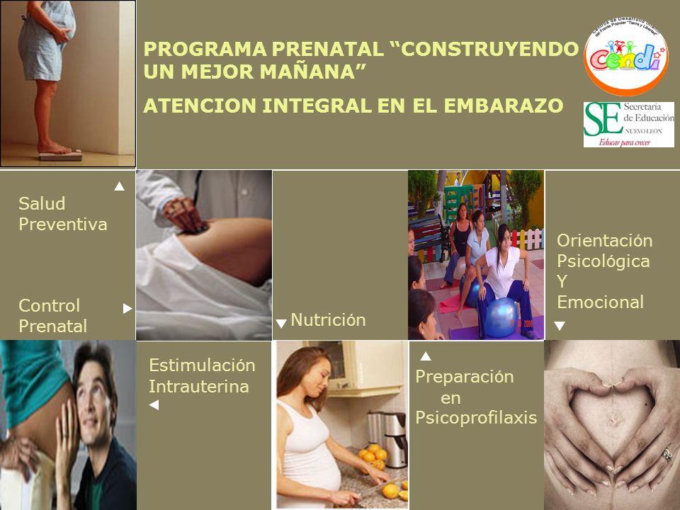 PROGRAMA PRENATAL CONSTRUYENDO UN MEJOR MAÑANA