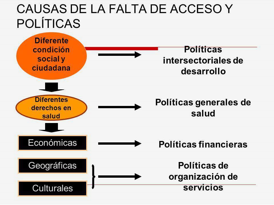 CAUSAS DE LA FALTA DE ACCESO Y POLÍTICAS