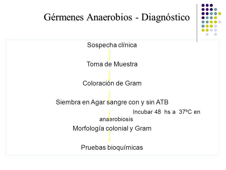 Gérmenes Anaerobios - Diagnóstico