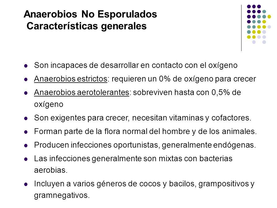 Anaerobios No Esporulados Características generales