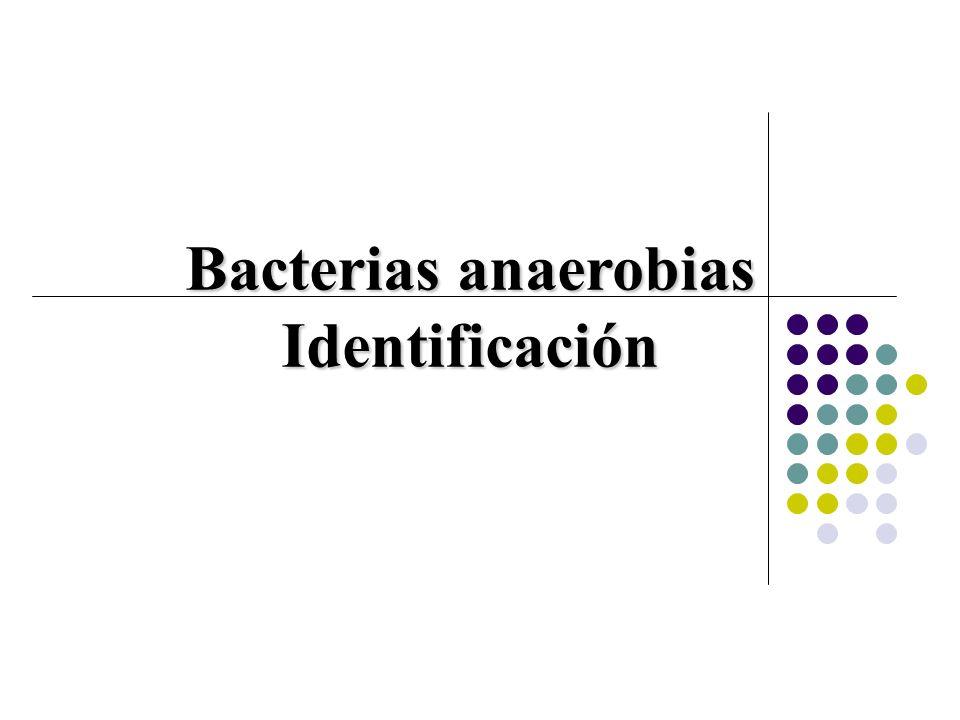Bacterias anaerobias Identificación