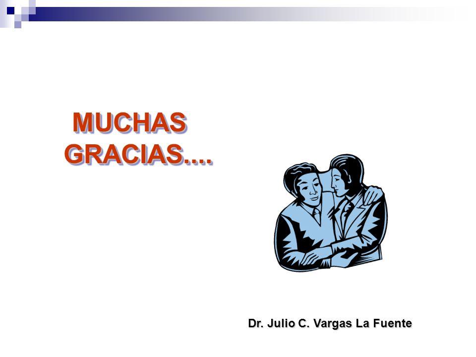 Dr. Julio C. Vargas La Fuente