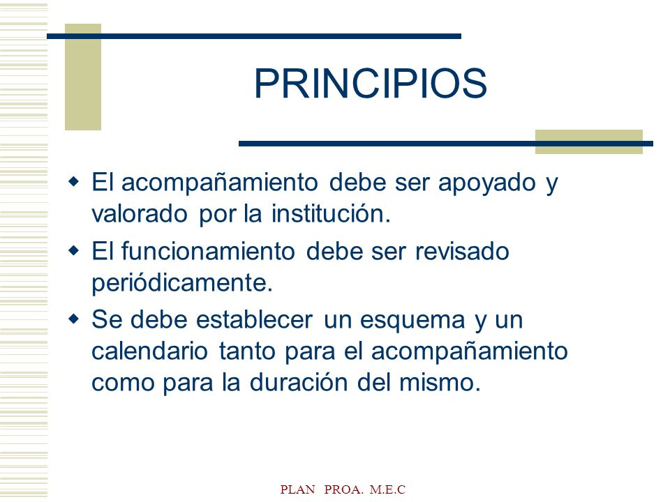 PRINCIPIOS El acompañamiento debe ser apoyado y valorado por la institución. El funcionamiento debe ser revisado periódicamente.
