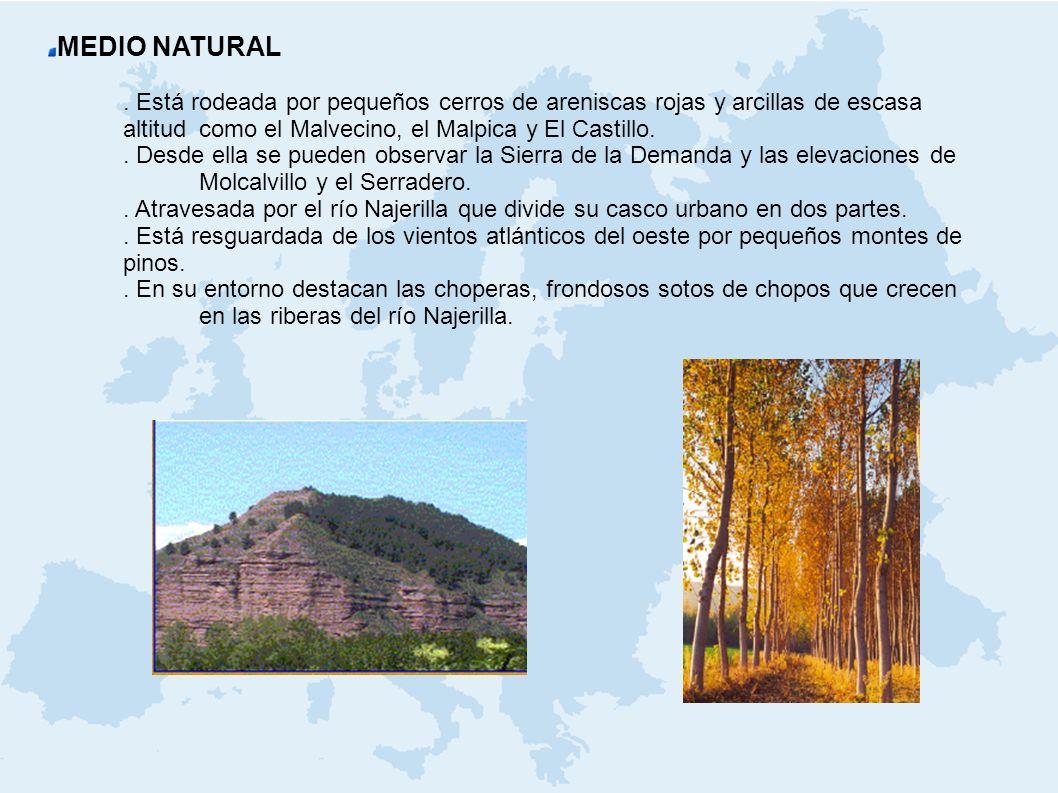 MEDIO NATURAL . Está rodeada por pequeños cerros de areniscas rojas y arcillas de escasa altitud como el Malvecino, el Malpica y El Castillo.