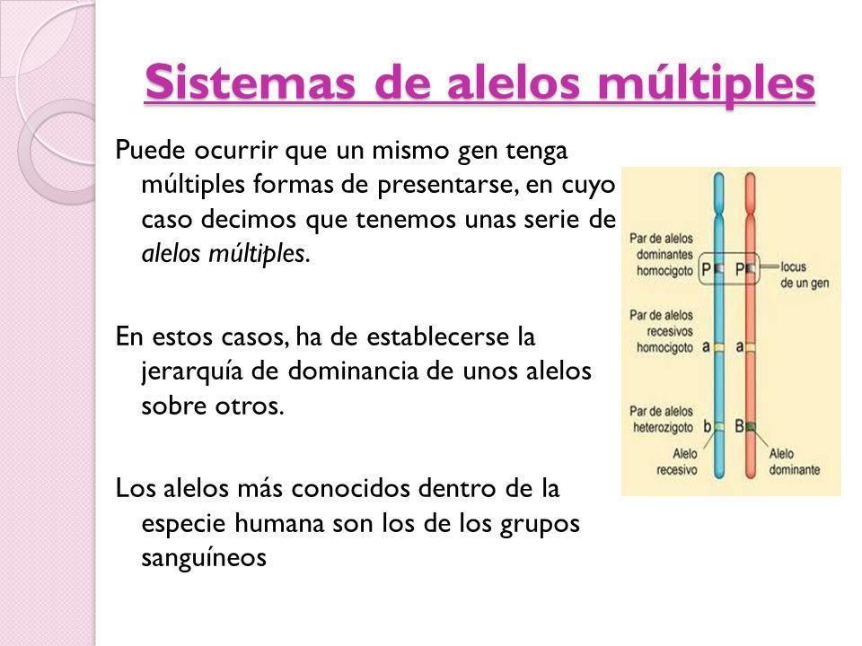 Sistemas de alelos múltiples