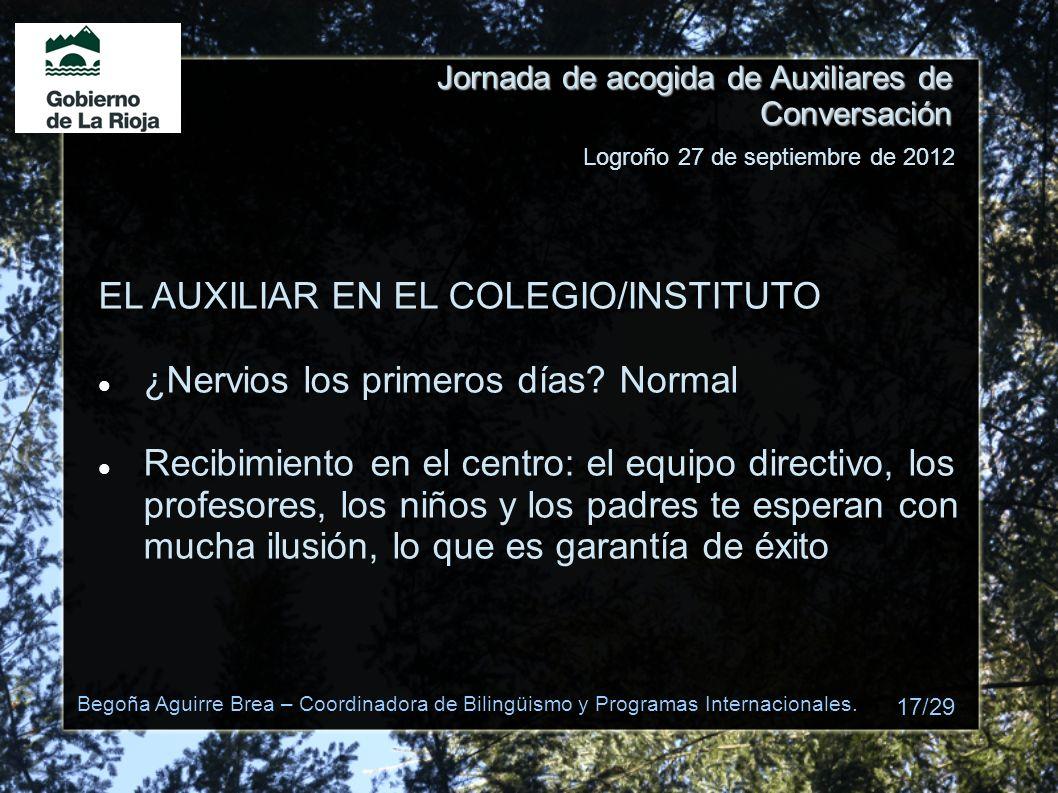 EL AUXILIAR EN EL COLEGIO/INSTITUTO ¿Nervios los primeros días Normal