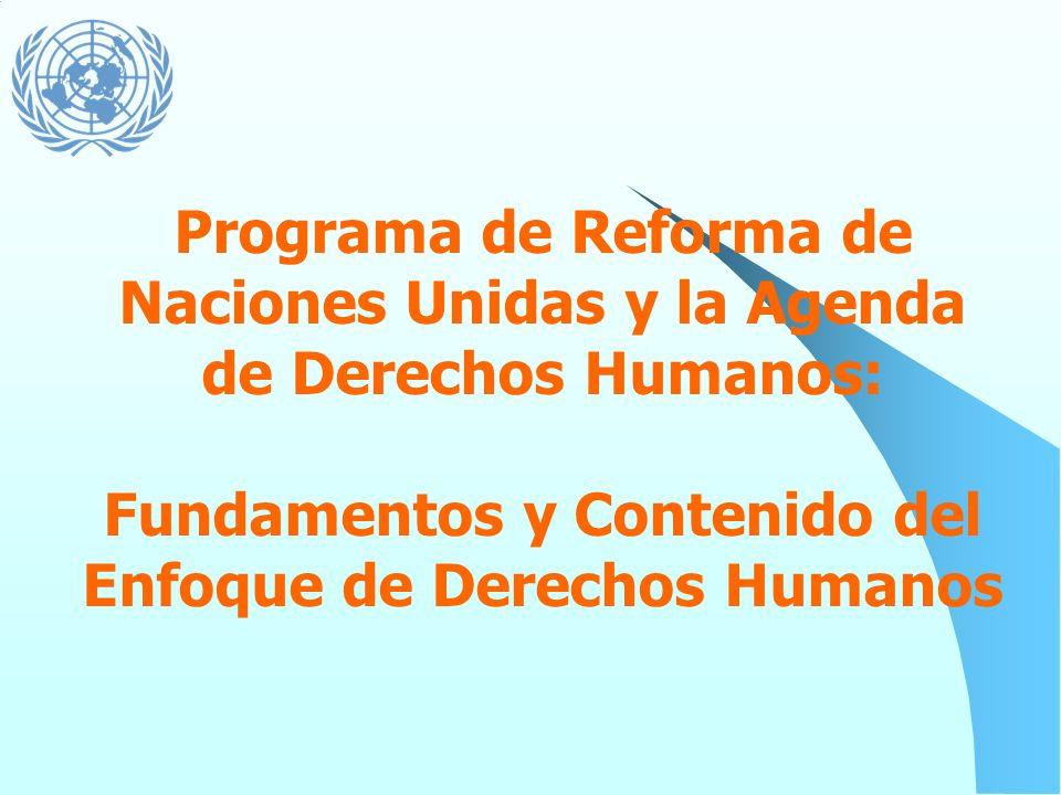 Programa de Reforma de Naciones Unidas y la Agenda de Derechos Humanos: Fundamentos y Contenido del Enfoque de Derechos Humanos