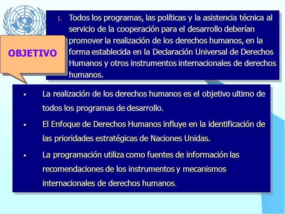 Todos los programas, las políticas y la asistencia técnica al servicio de la cooperación para el desarrollo deberían promover la realización de los derechos humanos, en la forma establecida en la Declaración Universal de Derechos Humanos y otros instrumentos internacionales de derechos humanos.