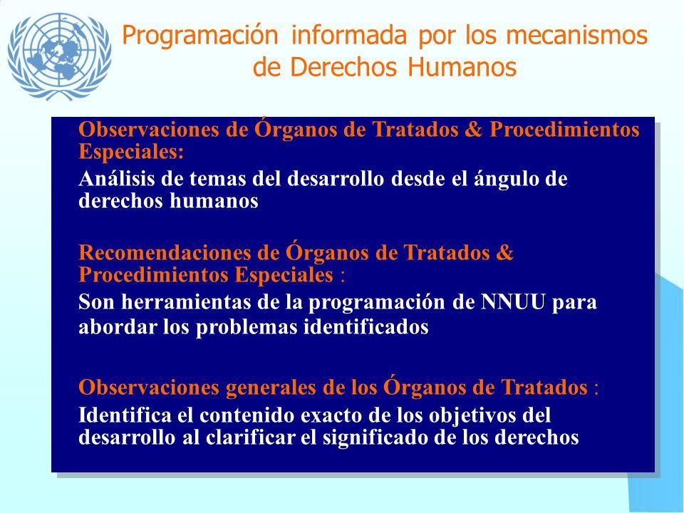 Programación informada por los mecanismos de Derechos Humanos