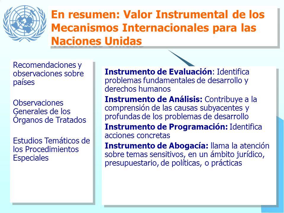 En resumen: Valor Instrumental de los Mecanismos Internacionales para las Naciones Unidas