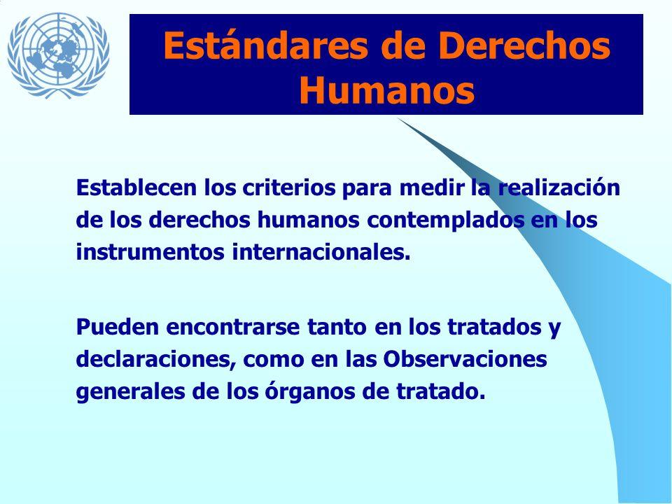 Estándares de Derechos Humanos
