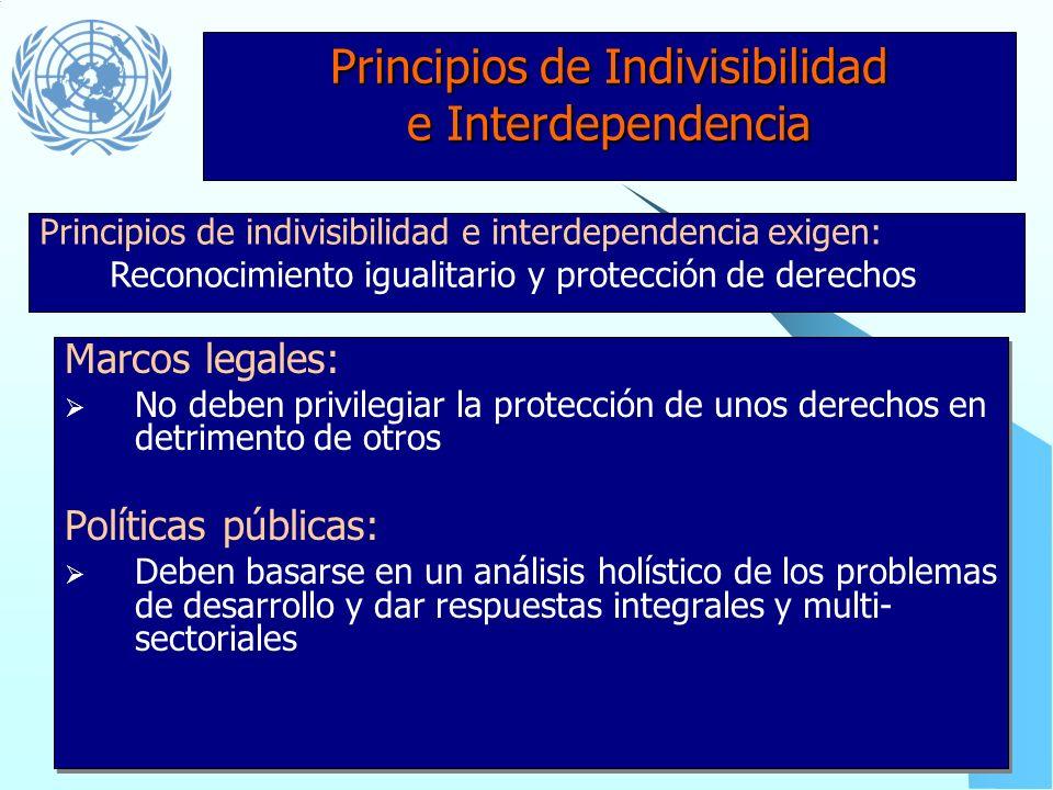 Principios de Indivisibilidad e Interdependencia