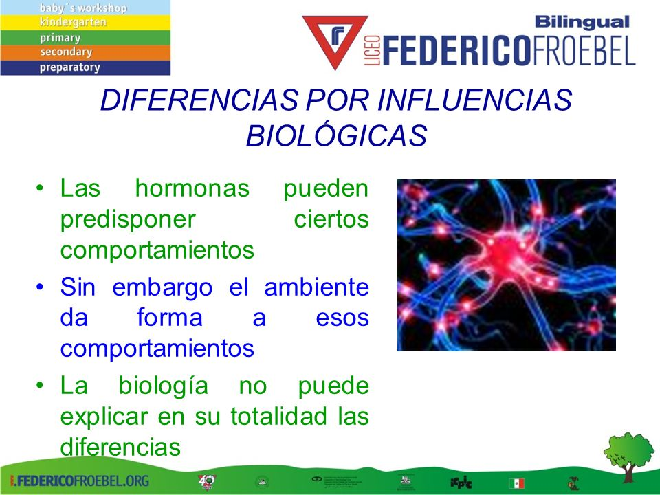 DIFERENCIAS POR INFLUENCIAS BIOLÓGICAS