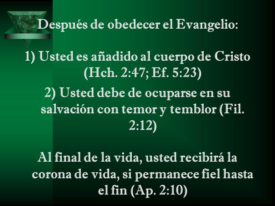 Después de obedecer el Evangelio: