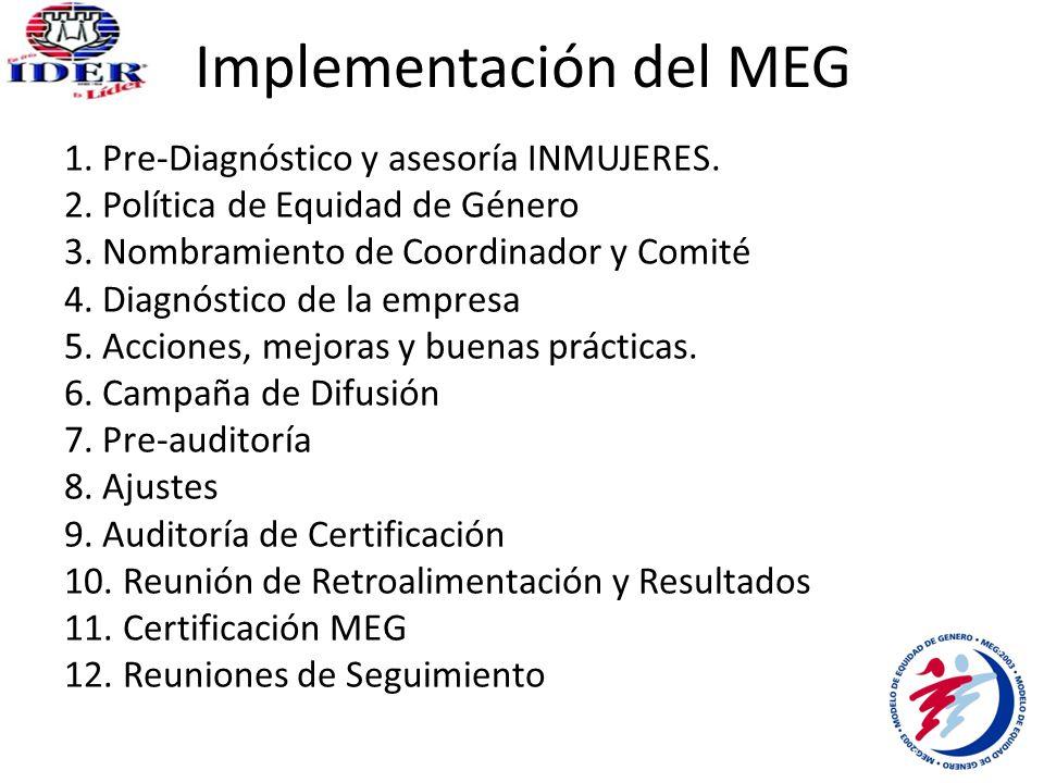 Implementación del MEG