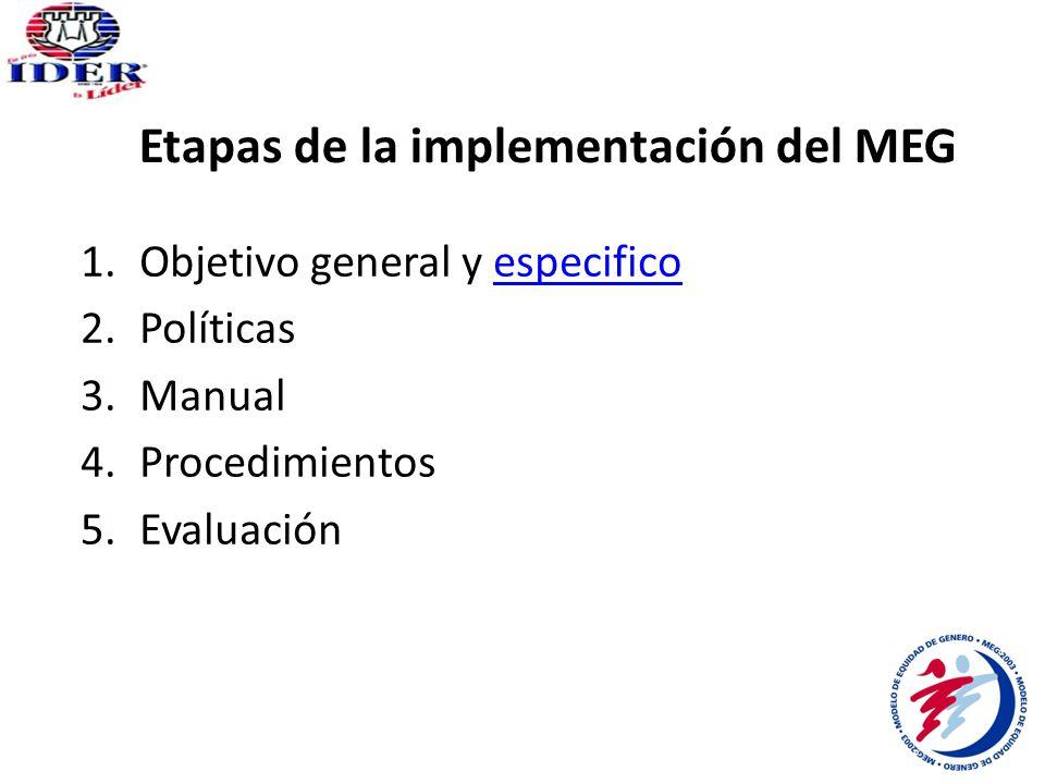 Etapas de la implementación del MEG