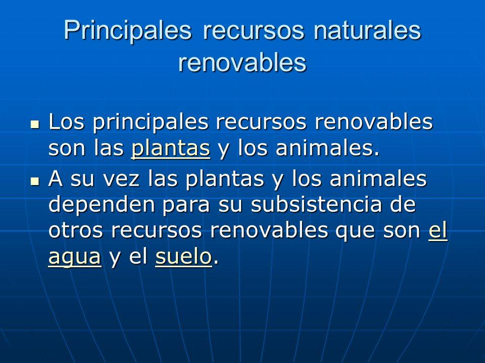 Principales recursos naturales renovables