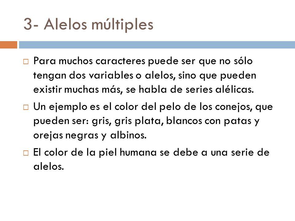 3- Alelos múltiples