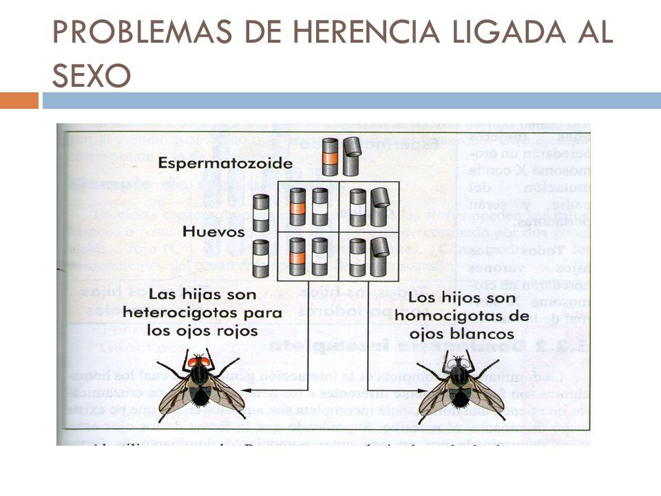 PROBLEMAS DE HERENCIA LIGADA AL SEXO
