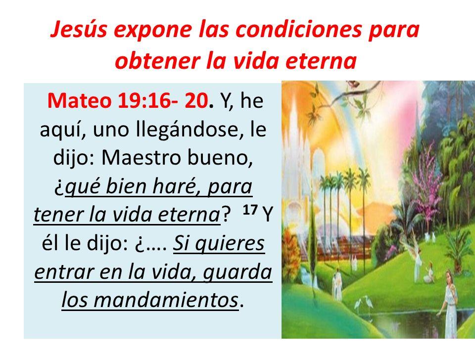 Jesús expone las condiciones para obtener la vida eterna