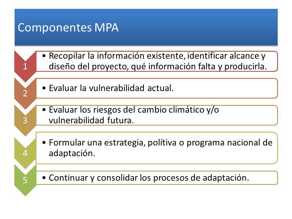 Componentes MPA 1. Recopilar la información existente, identificar alcance y diseño del proyecto, qué información falta y producirla.