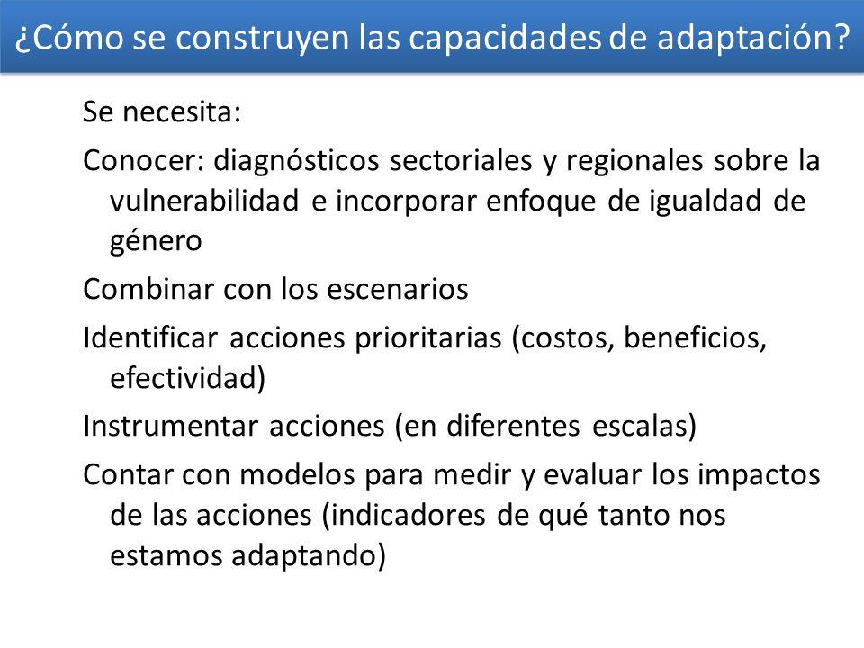 ¿Cómo se construyen las capacidades de adaptación
