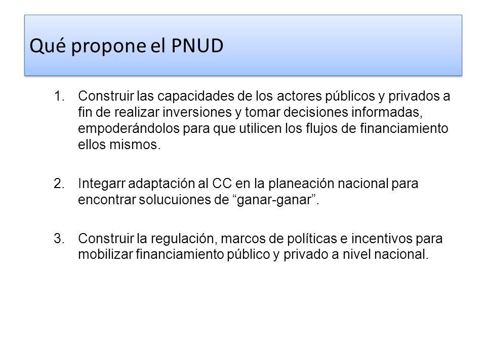 Qué propone el PNUD