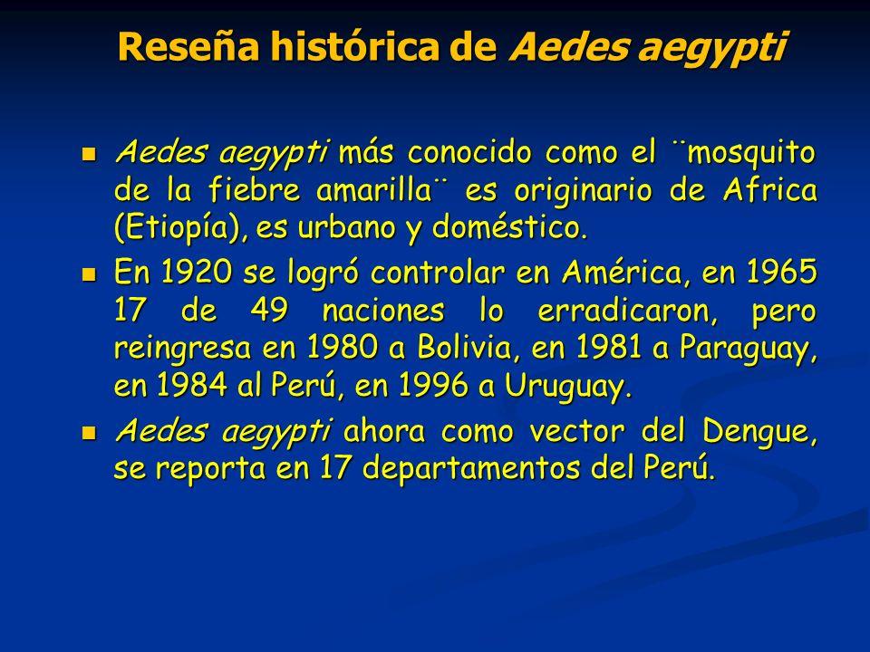 Reseña histórica de Aedes aegypti