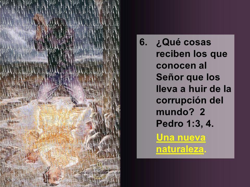 6. ¿Qué cosas reciben los que conocen al Señor que los lleva a huir de la corrupción del mundo 2 Pedro 1:3, 4.
