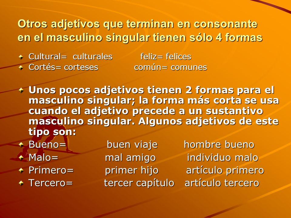 Otros adjetivos que terminan en consonante en el masculino singular tienen sólo 4 formas