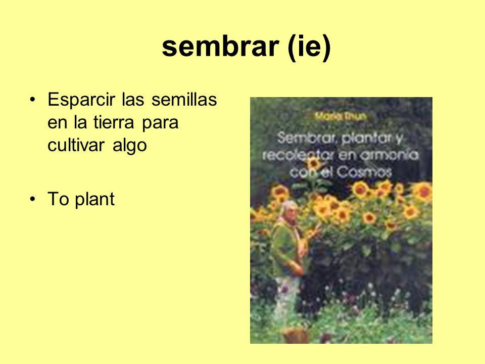sembrar (ie) Esparcir las semillas en la tierra para cultivar algo