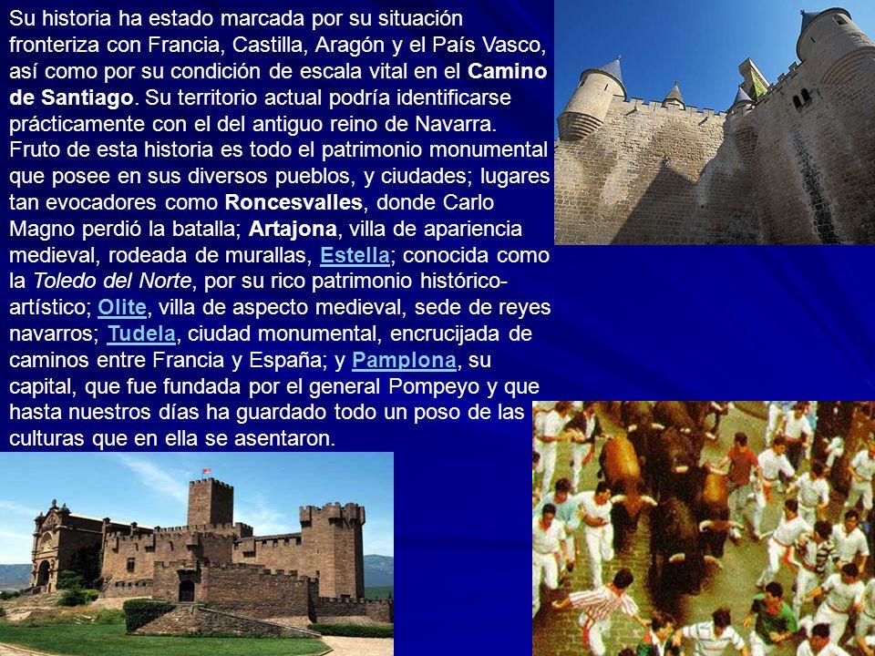 Su historia ha estado marcada por su situación fronteriza con Francia, Castilla, Aragón y el País Vasco, así como por su condición de escala vital en el Camino de Santiago.