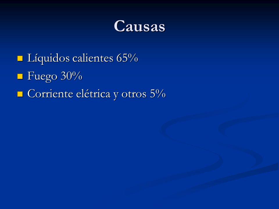 Causas Líquidos calientes 65% Fuego 30% Corriente elétrica y otros 5%