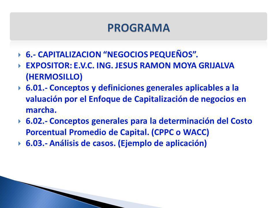 PROGRAMA 6.- CAPITALIZACION NEGOCIOS PEQUEÑOS .